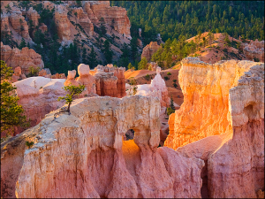 Bryce-Canyon-0634