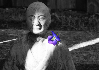 Buddha 6736