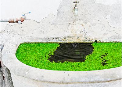 Garden Sink 1409