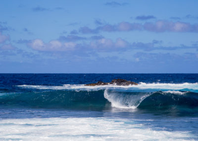 Wave 9281